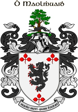 Molloy family crest